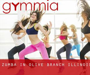 Zumba in Olive Branch (Illinois)