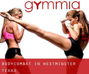 BodyCombat in Westminster (Texas)