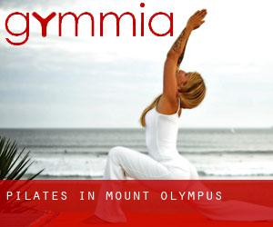 Pilates in Mount Olympus
