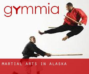 Martial Arts in Alaska