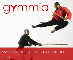Martial Arts in Blue Berry Hill