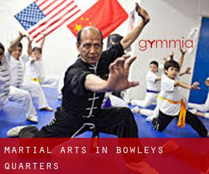Martial Arts in Bowleys Quarters