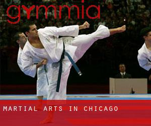 Martial Arts in Chicago