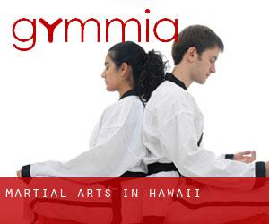 Martial Arts in Hawaii