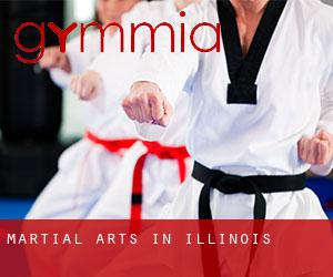 Martial Arts in Illinois