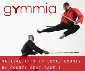 Martial Arts in Lucas County by County Seat - page 1