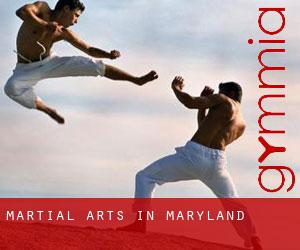 Martial Arts in Maryland