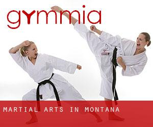 Martial Arts in Montana