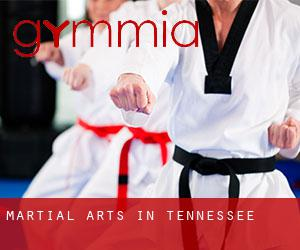 Martial Arts in Tennessee