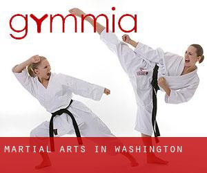 Martial Arts in Washington